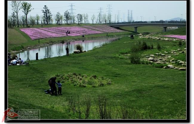 春游上海辰山植物园,西沙湿地公园.